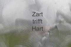 20-Zart-trift-Hard-letzte-Seite